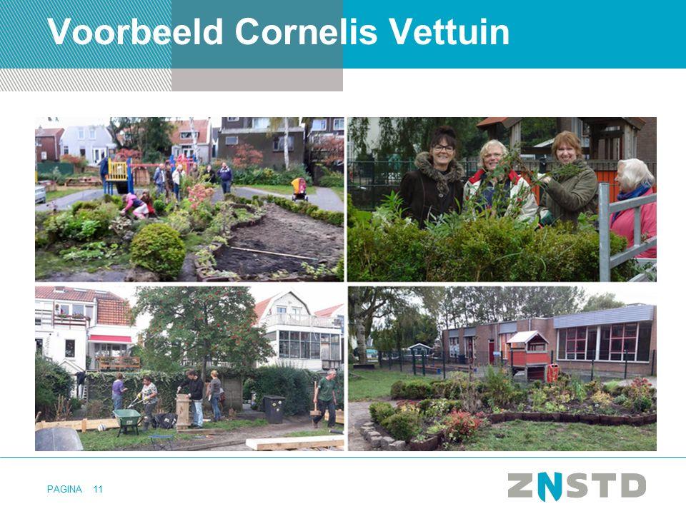 Voorbeeld Cornelis Vettuin