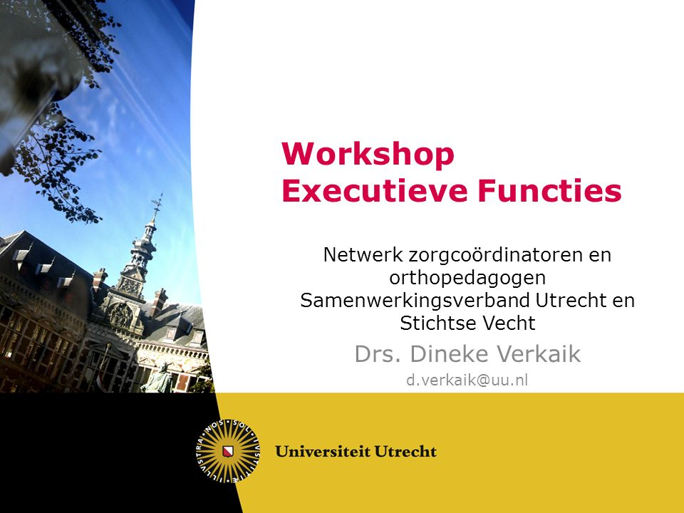 Workshop Executieve Functies