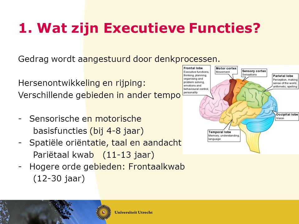 1. Wat zijn Executieve Functies