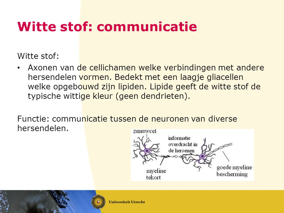 Witte stof: communicatie