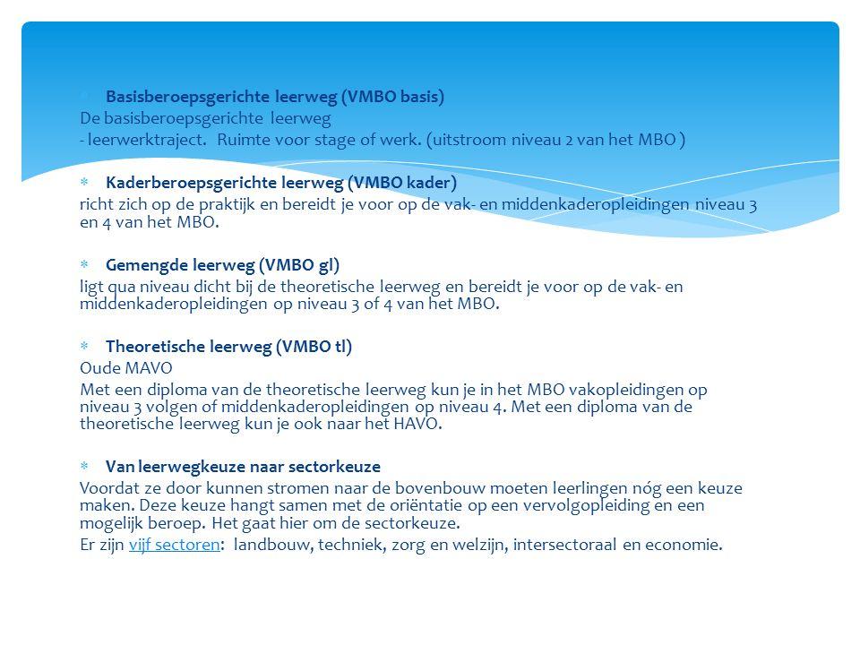 Basisberoepsgerichte leerweg (VMBO basis)