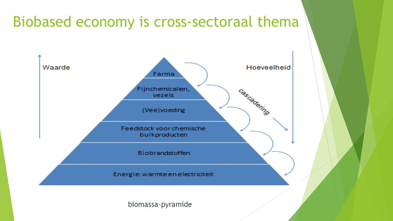 Biobased economy is cross-sectoraal thema