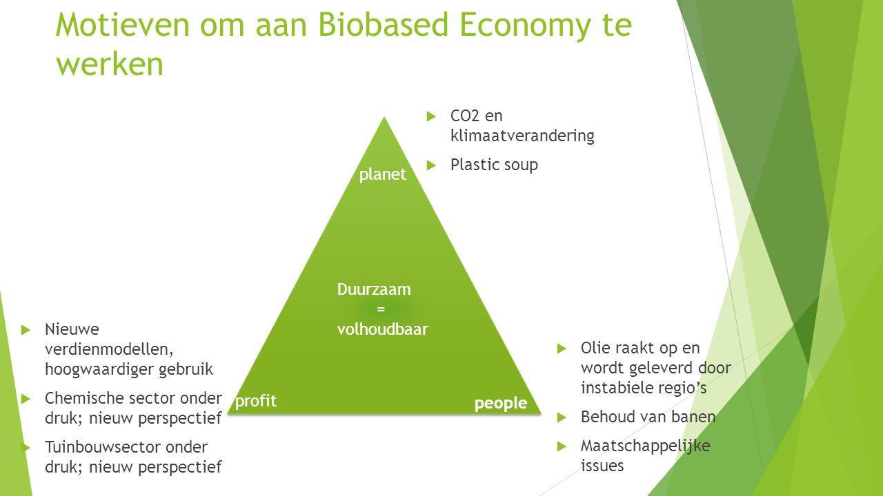 Motieven om aan Biobased Economy te werken