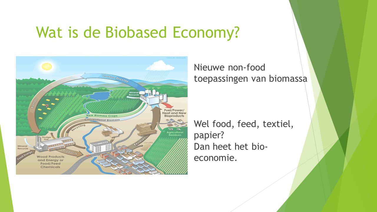 Wat is de Biobased Economy