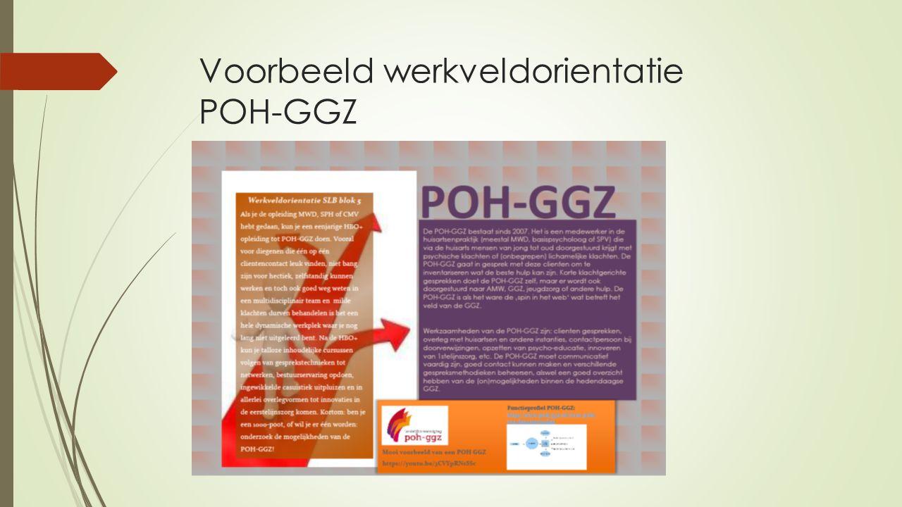 Voorbeeld werkveldorientatie POH-GGZ