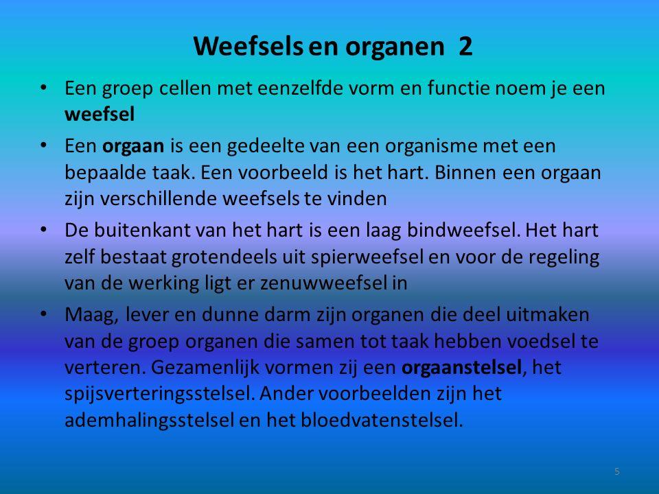 Weefsels en organen 2 Een groep cellen met eenzelfde vorm en functie noem je een weefsel.