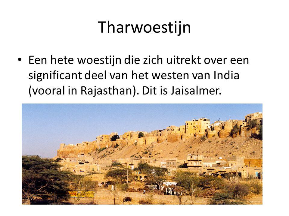 Tharwoestijn Een hete woestijn die zich uitrekt over een significant deel van het westen van India (vooral in Rajasthan).