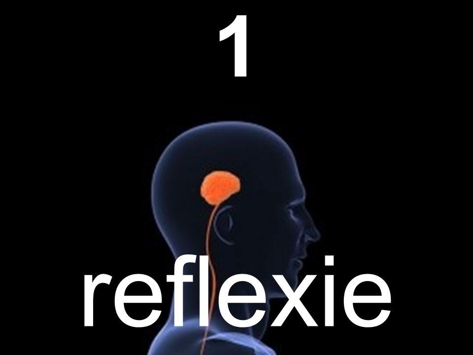 1 reflexie