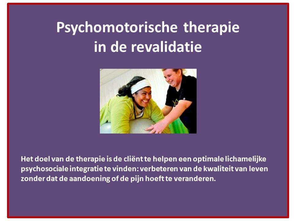 Psychomotorische therapie in de revalidatie