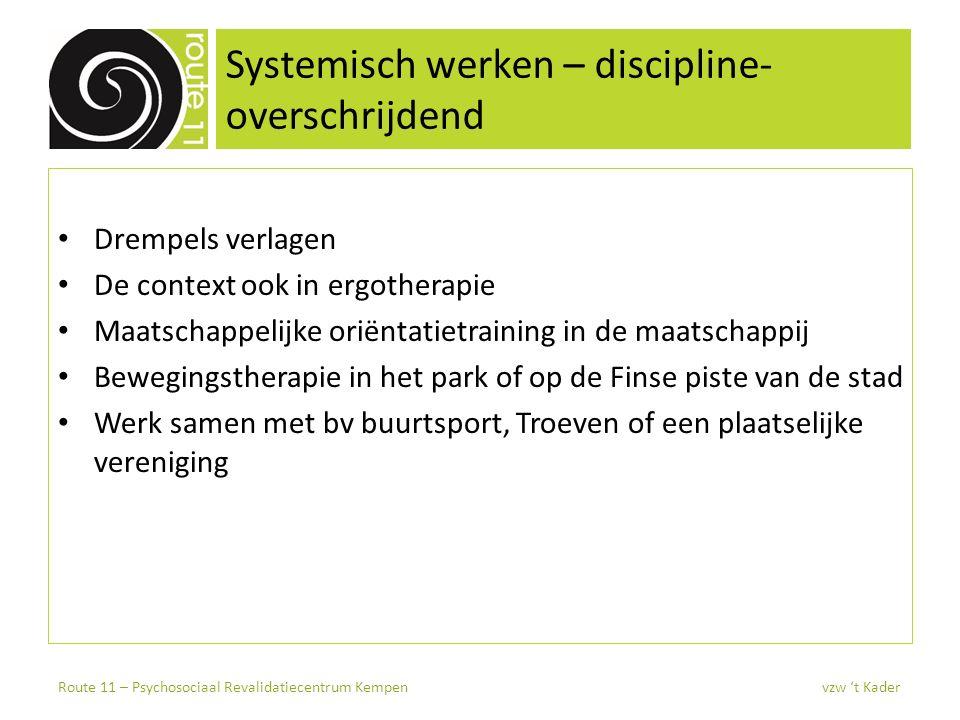 Systemisch werken – discipline-overschrijdend