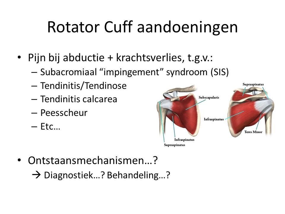 Rotator Cuff aandoeningen