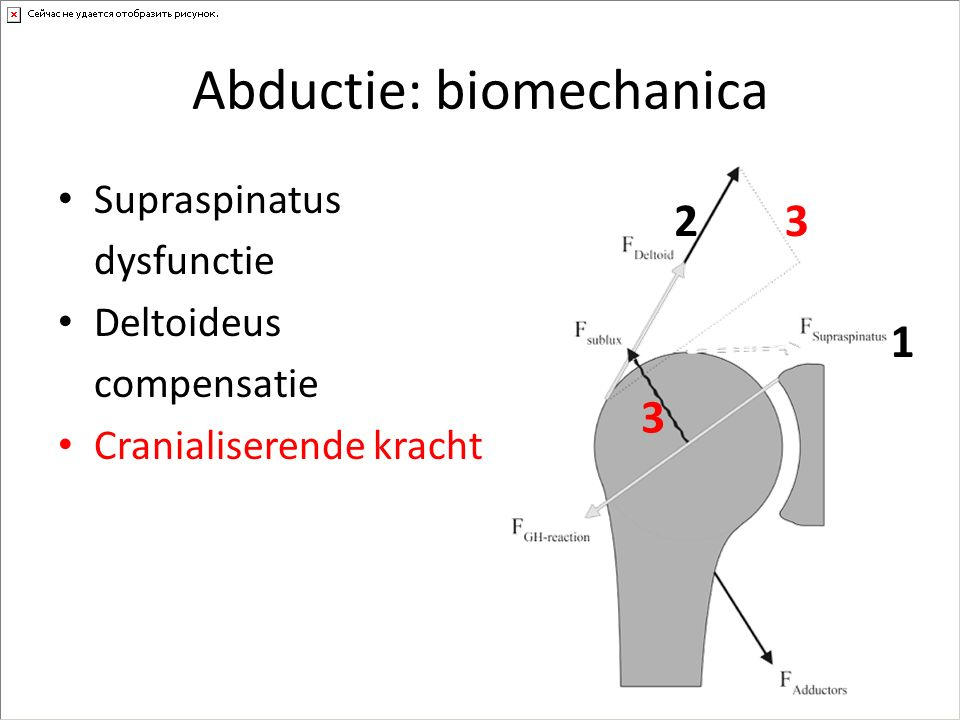 Abductie: biomechanica
