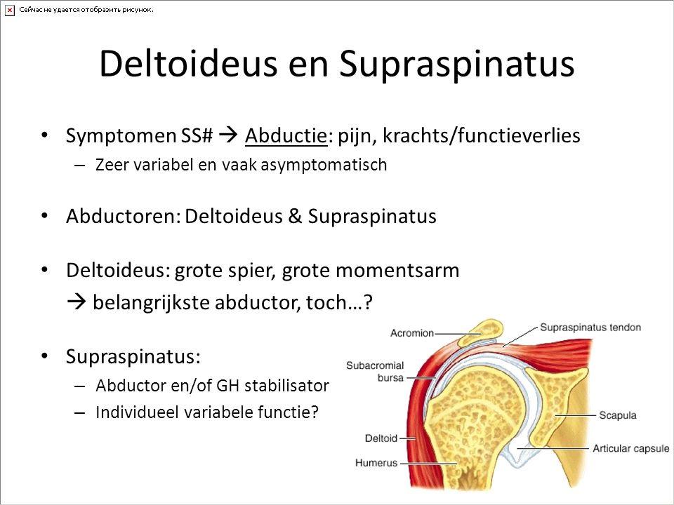 Deltoideus en Supraspinatus