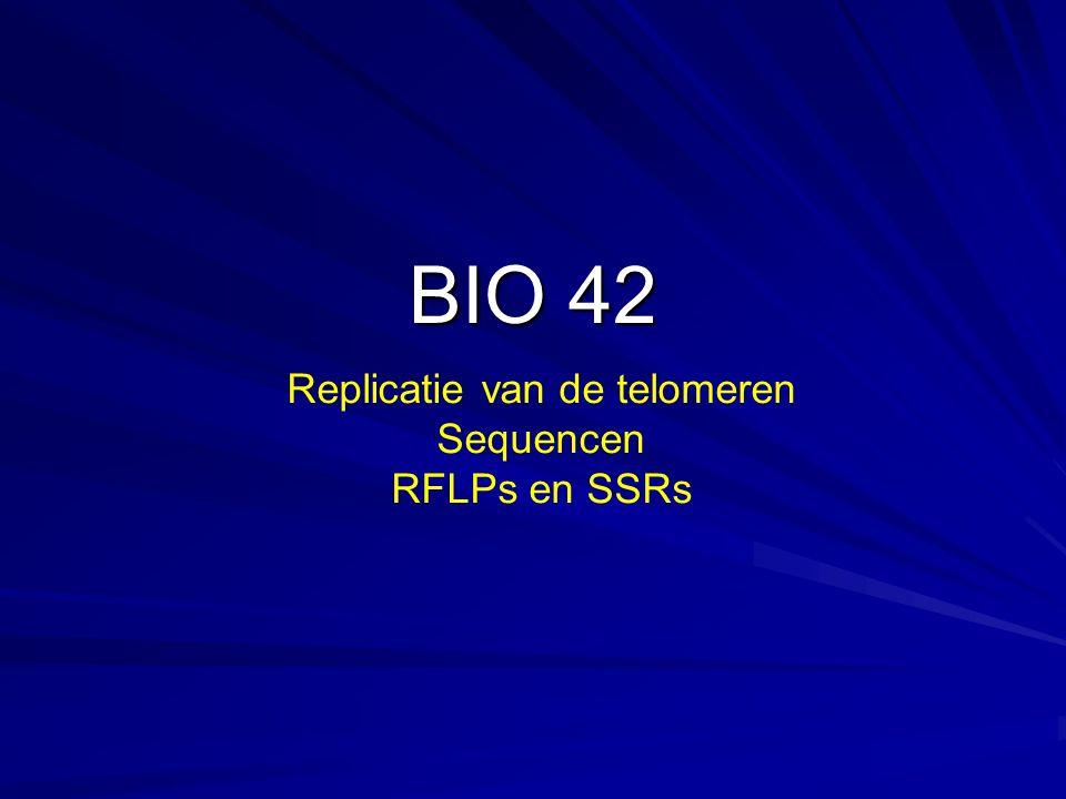 Replicatie van de telomeren