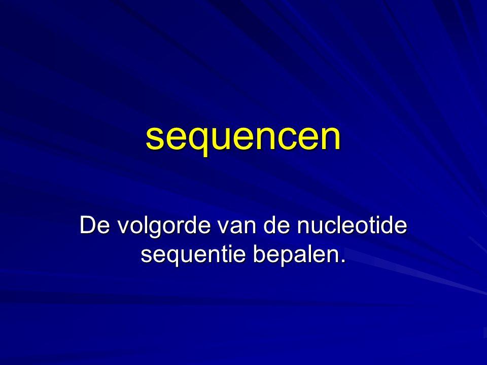 De volgorde van de nucleotide sequentie bepalen.