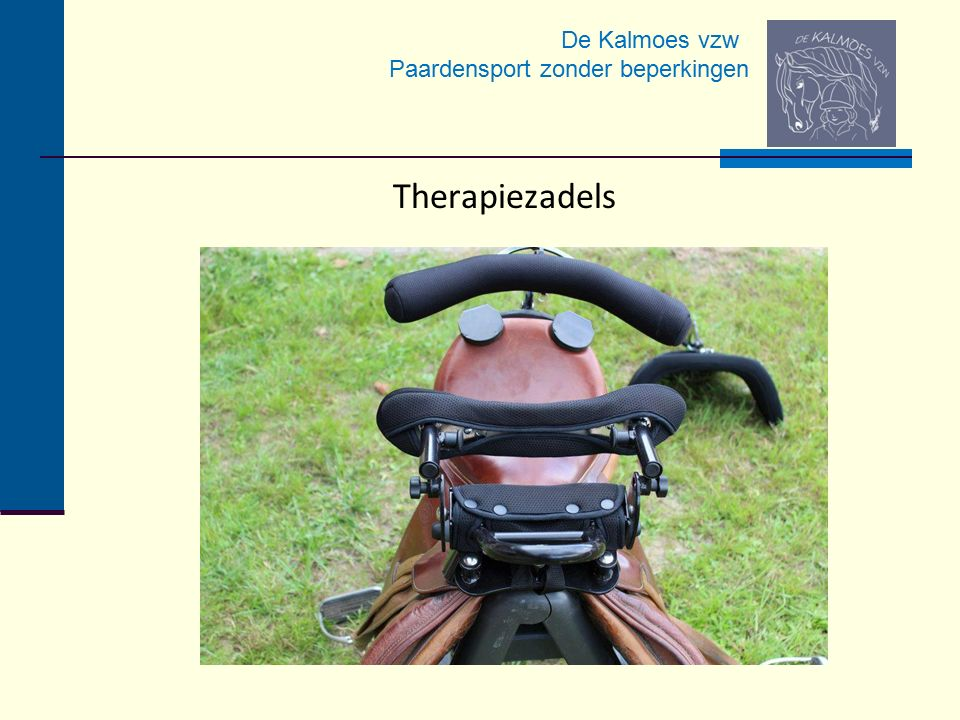 Therapiezadels