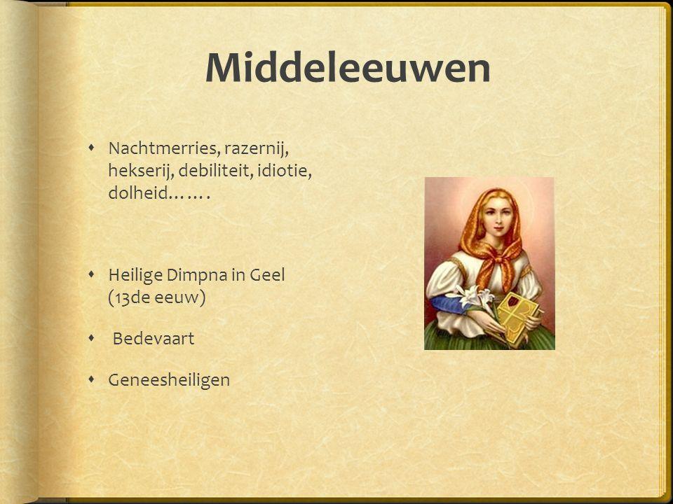Middeleeuwen Nachtmerries, razernij, hekserij, debiliteit, idiotie, dolheid……. Heilige Dimpna in Geel (13de eeuw)