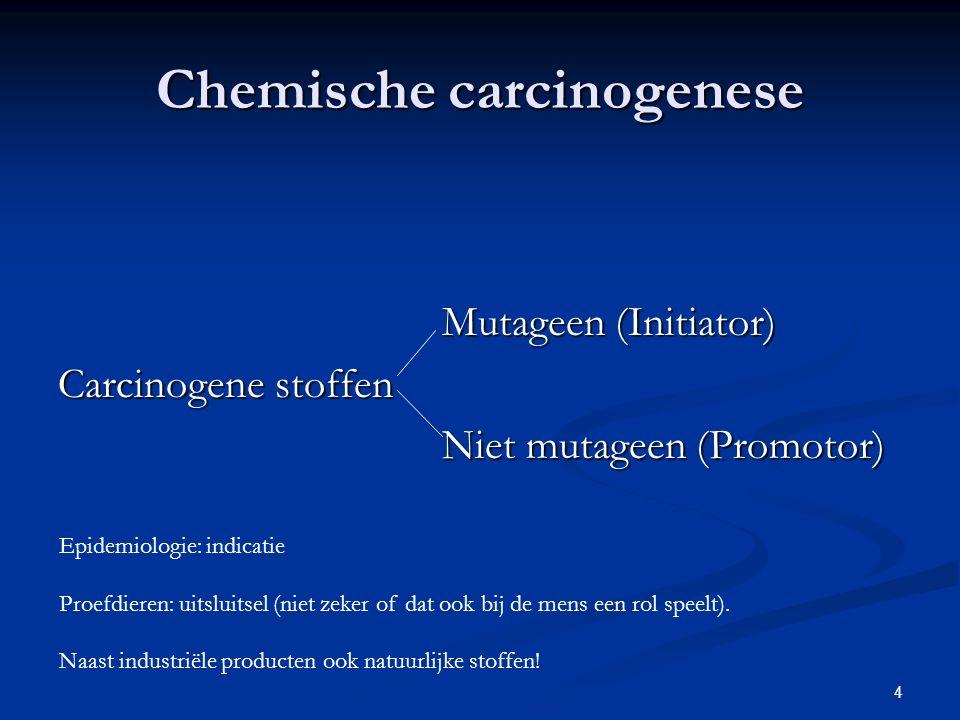 Chemische carcinogenese