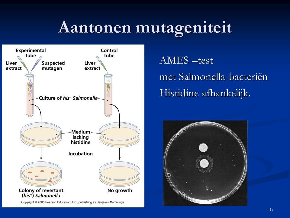 Aantonen mutageniteit