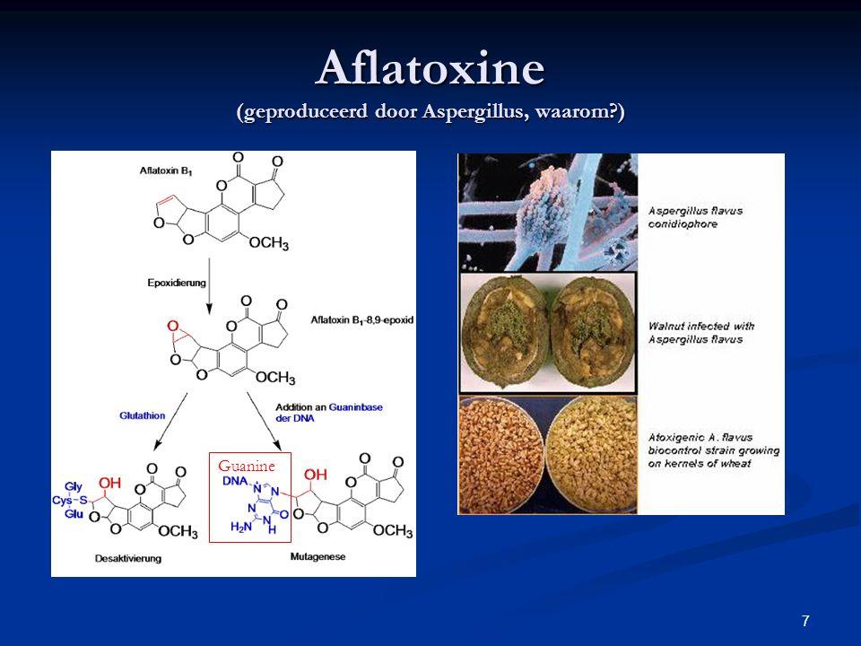 Aflatoxine (geproduceerd door Aspergillus, waarom )