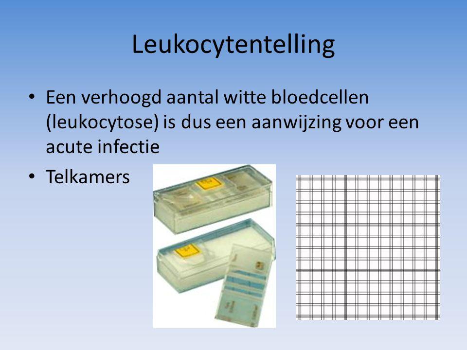 Leukocytentelling Een verhoogd aantal witte bloedcellen (leukocytose) is dus een aanwijzing voor een acute infectie.