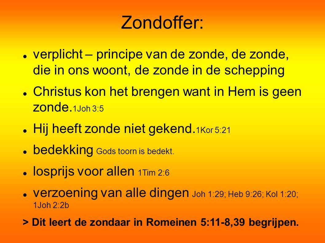 Zondoffer: verplicht – principe van de zonde, de zonde, die in ons woont, de zonde in de schepping.