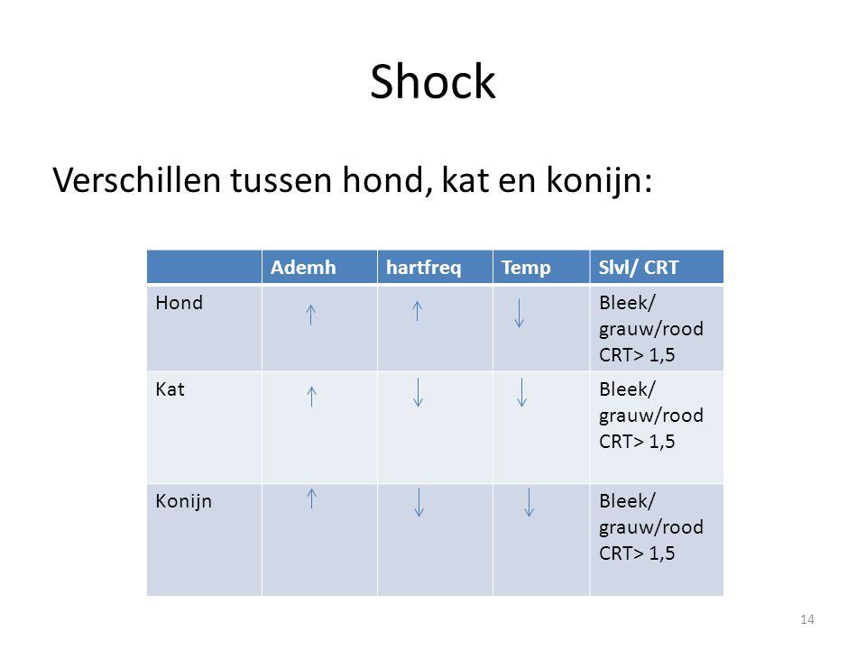 Shock Verschillen tussen hond, kat en konijn: Ademh hartfreq Temp