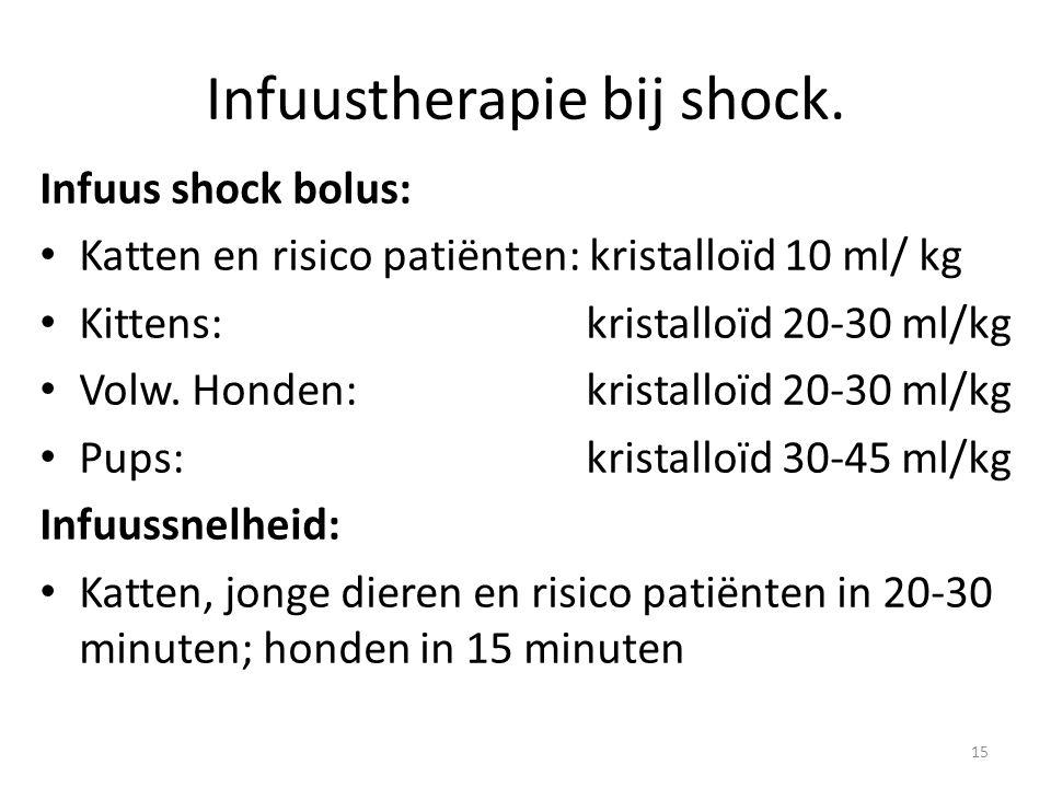 Infuustherapie bij shock.