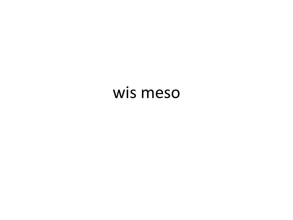 wis meso