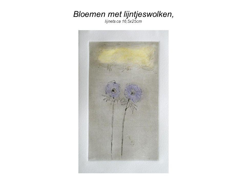 Bloemen met lijntjeswolken, lijnets ca 16,5x25cm