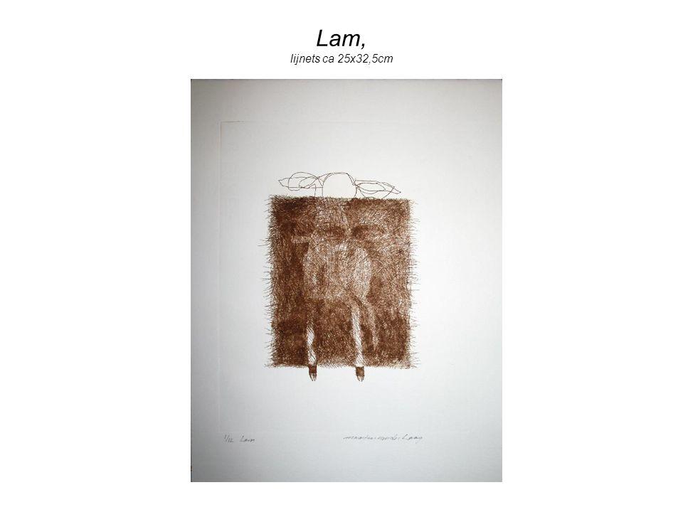 Lam, lijnets ca 25x32,5cm