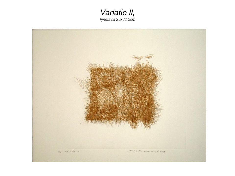 Variatie II, lijnets ca 25x32,5cm