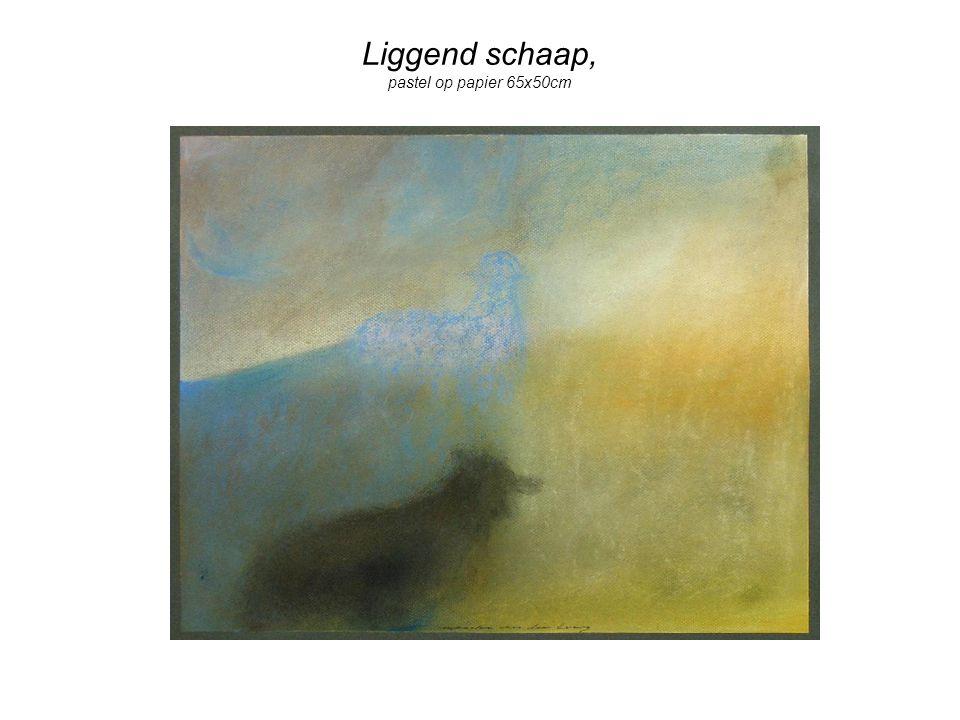Liggend schaap, pastel op papier 65x50cm