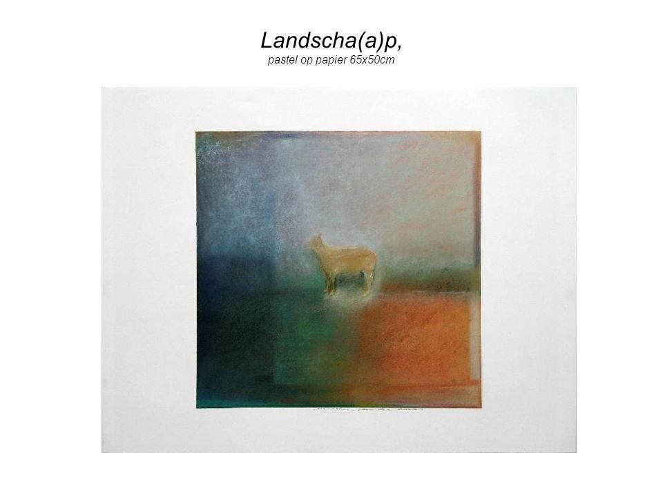 Landscha(a)p, pastel op papier 65x50cm