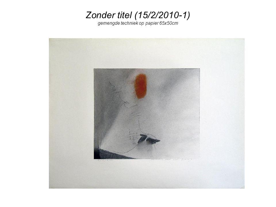 Zonder titel (15/2/2010-1) gemengde techniek op papier 65x50cm