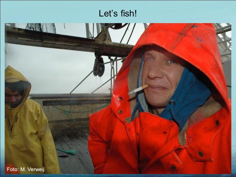 Let's fish! Foto: M. Verweij