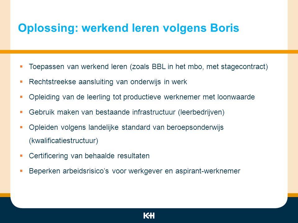 Oplossing: werkend leren volgens Boris