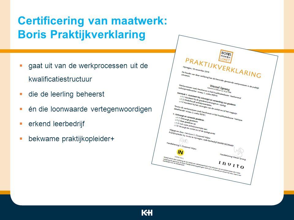 Certificering van maatwerk: Boris Praktijkverklaring