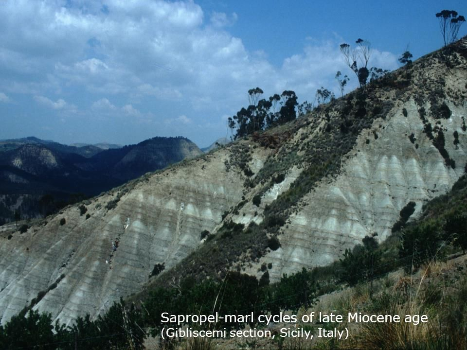 Sapropel-marl cycles of late Miocene age (Gibliscemi section, Sicily, Italy)