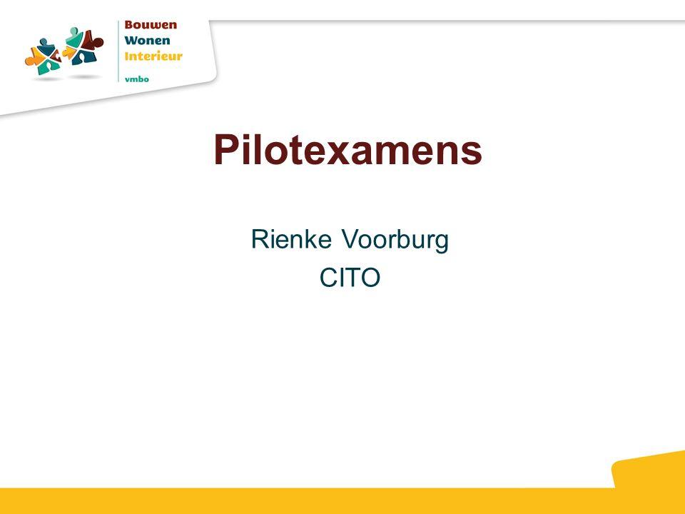 Pilotexamens Rienke Voorburg CITO
