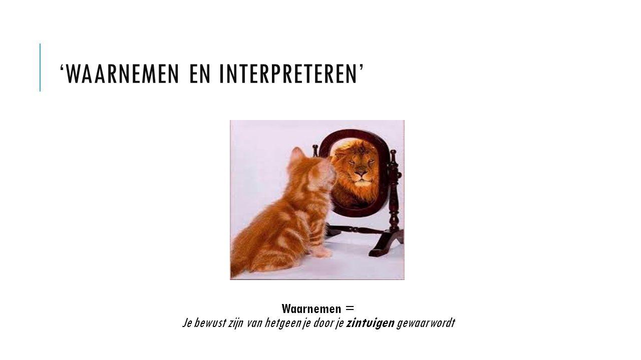 'Waarnemen en interpreteren'