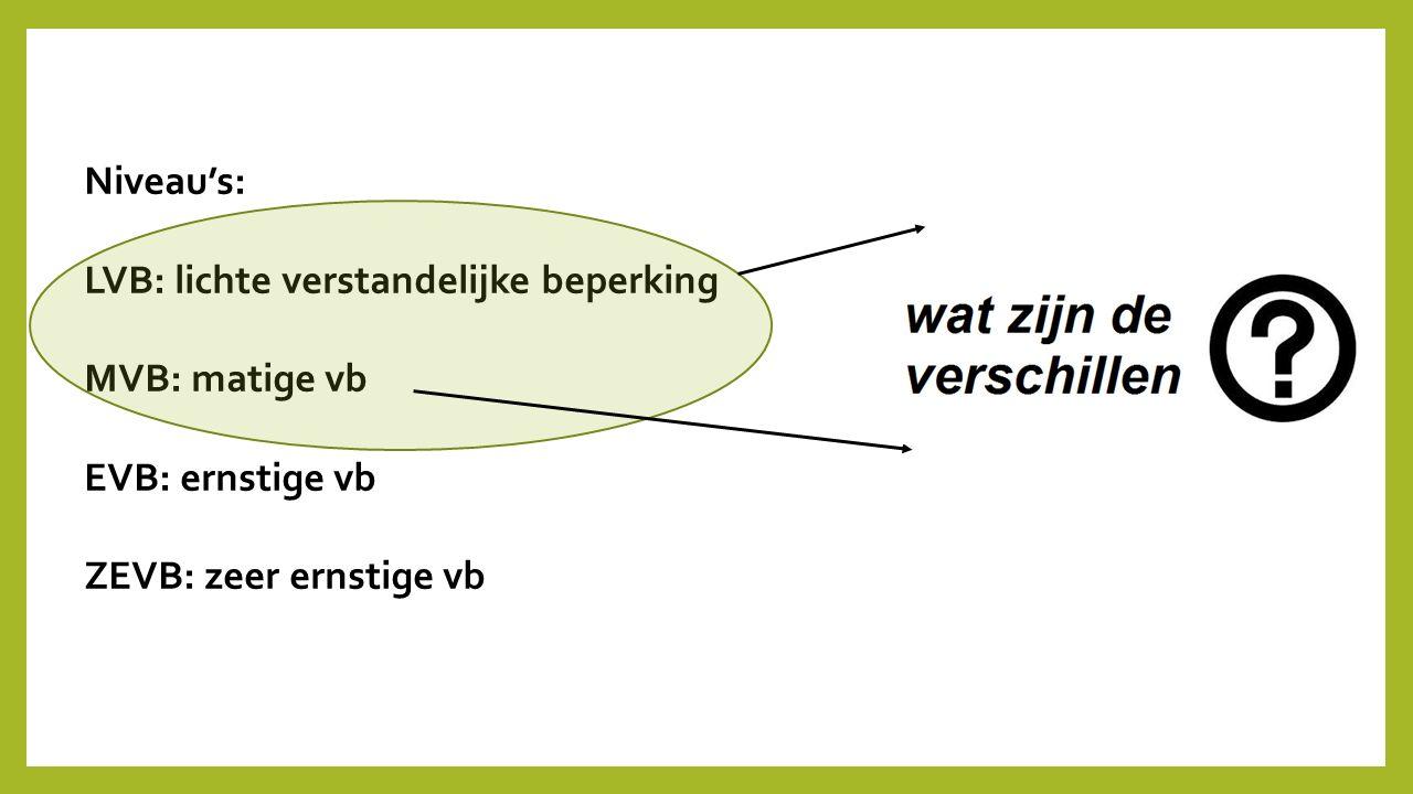 Niveau's: LVB: lichte verstandelijke beperking. MVB: matige vb.
