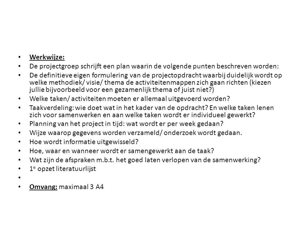 Werkwijze: De projectgroep schrijft een plan waarin de volgende punten beschreven worden: