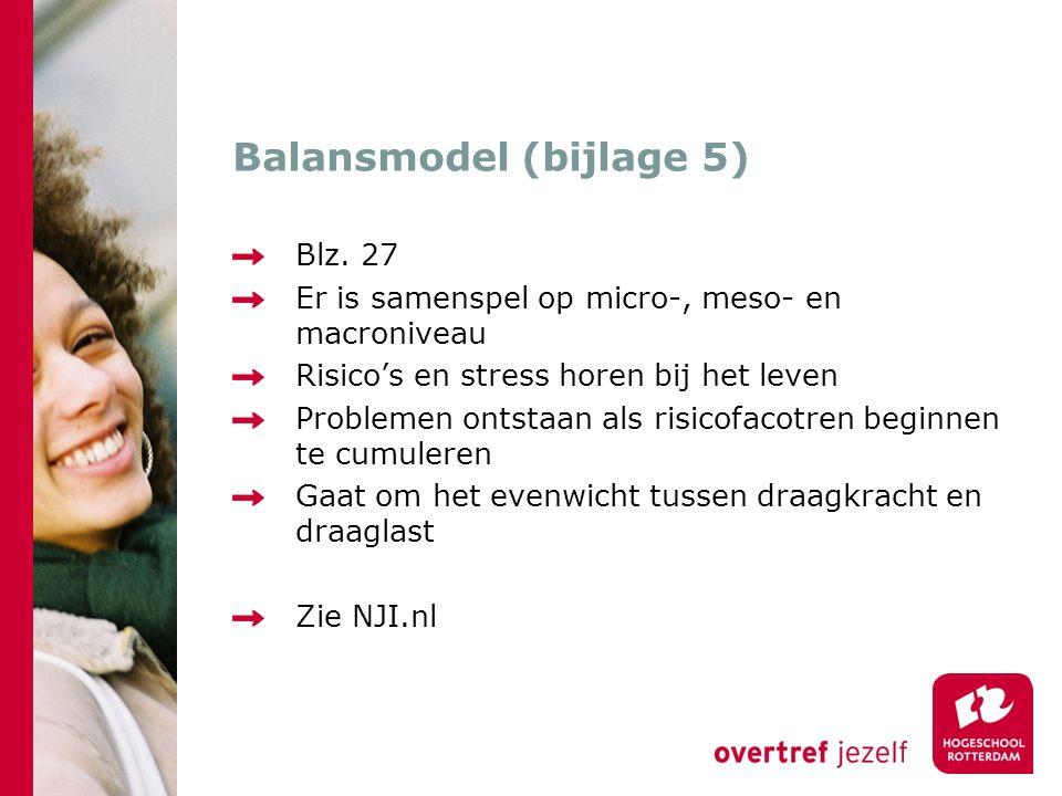 Balansmodel (bijlage 5)