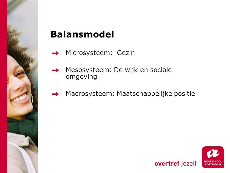 Balansmodel Microsysteem: Gezin