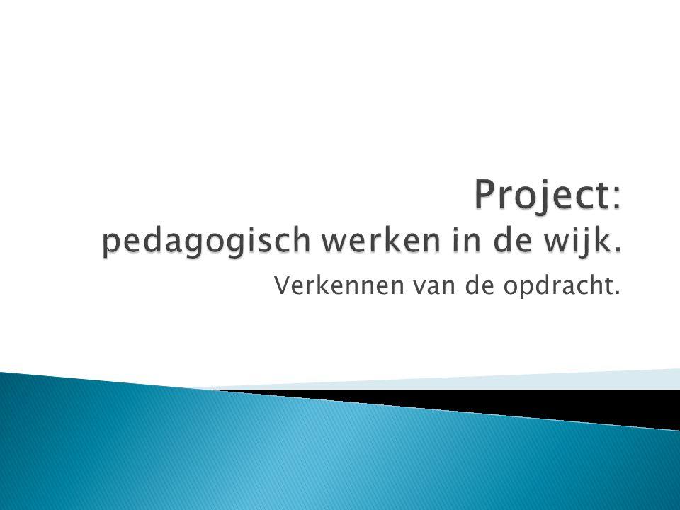 Project: pedagogisch werken in de wijk.