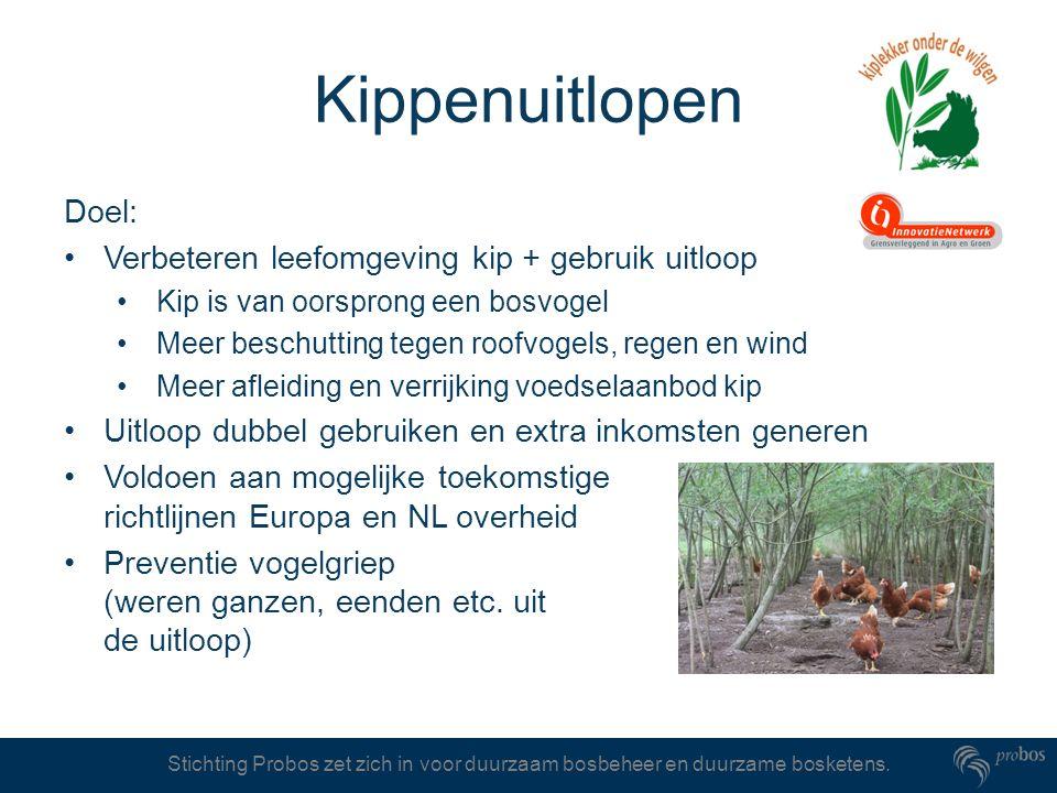 Kippenuitlopen Doel: Verbeteren leefomgeving kip + gebruik uitloop