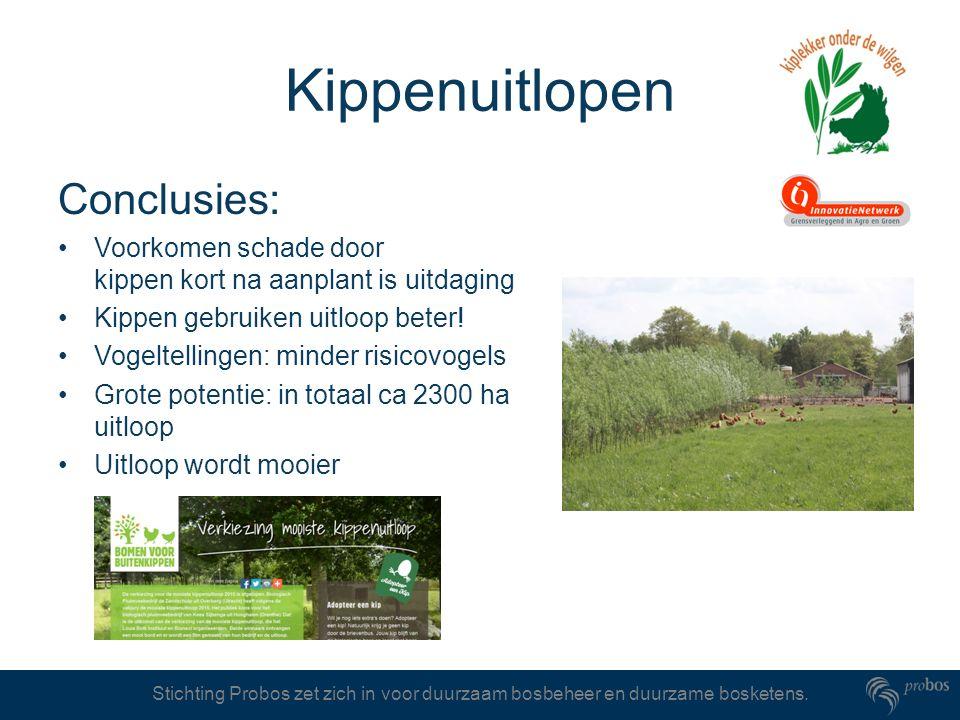 Kippenuitlopen Conclusies: