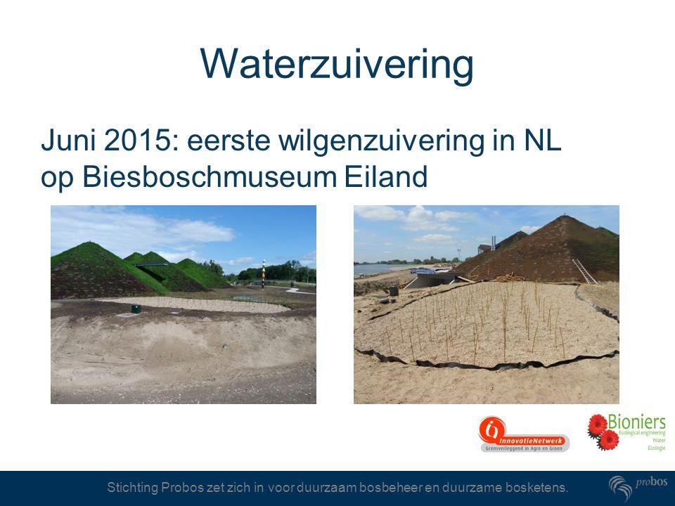 Waterzuivering Juni 2015: eerste wilgenzuivering in NL op Biesboschmuseum Eiland