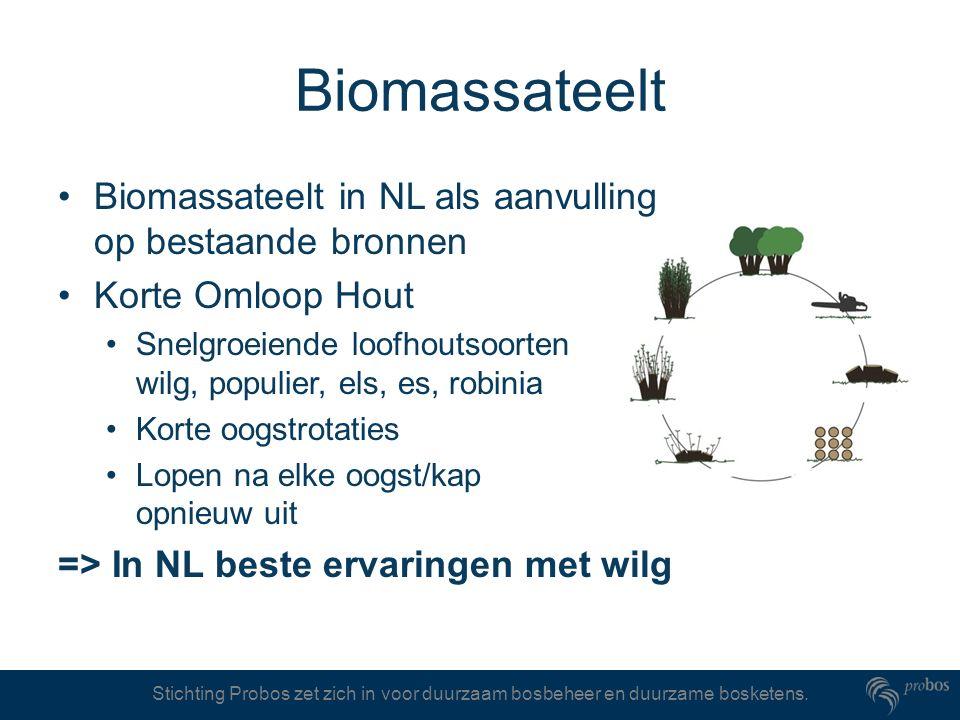 Biomassateelt Biomassateelt in NL als aanvulling op bestaande bronnen